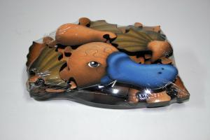 Platypus Puzzle